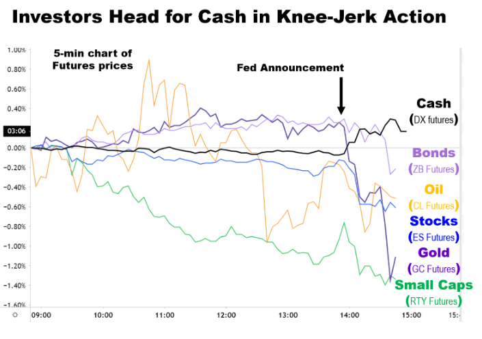 Flight to Cash and Utilities Following Fed Announcement