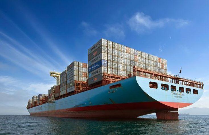 Bulk Carrier Vs  Container Vs  Tanker: Exploring the 2016 Shipping
