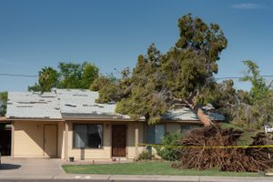 Tree falls on roof of home after huge storm in AZ