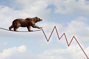 A brown bear walking across a zig-zag line.