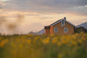 Yellow house across meadow, Gimsoy, Lofoten, Norway