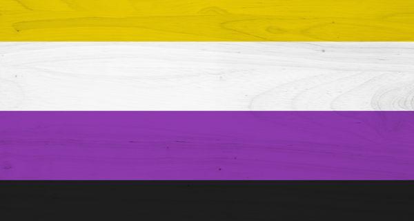 Nonbinary flag image