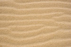 Sand texture in the beach