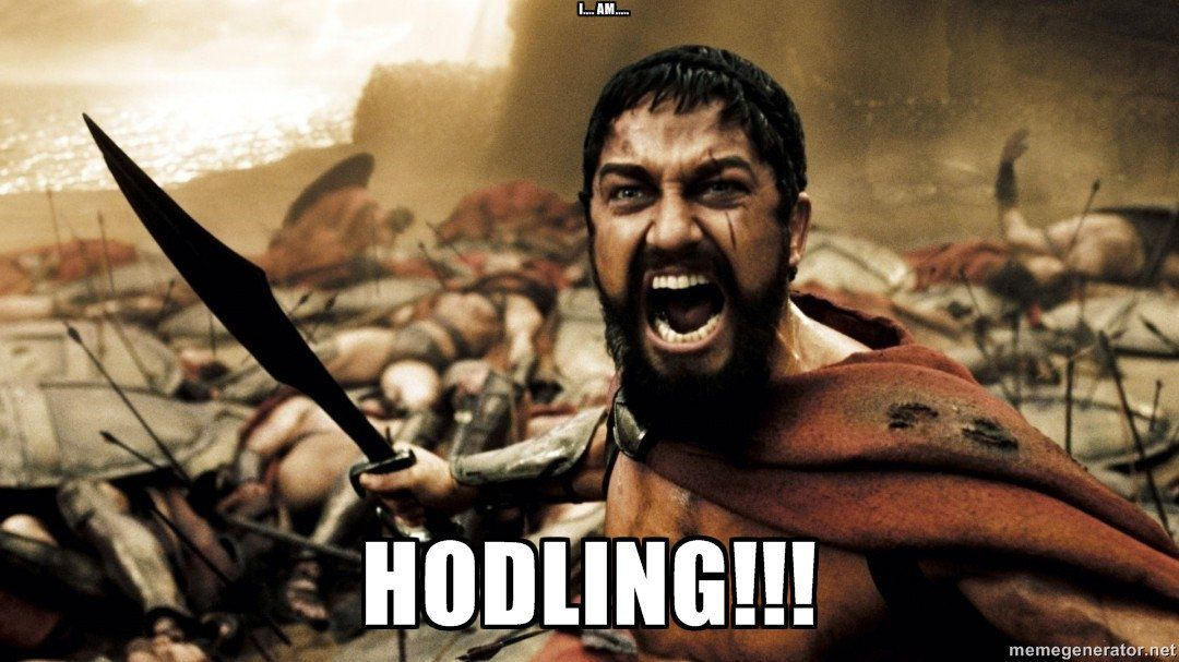 hodling-5bfd6cce46e0fb0026959ff8