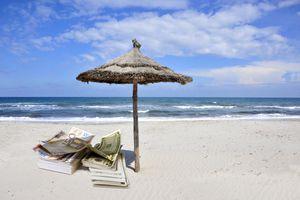 Dollar bills on a sunny beach.
