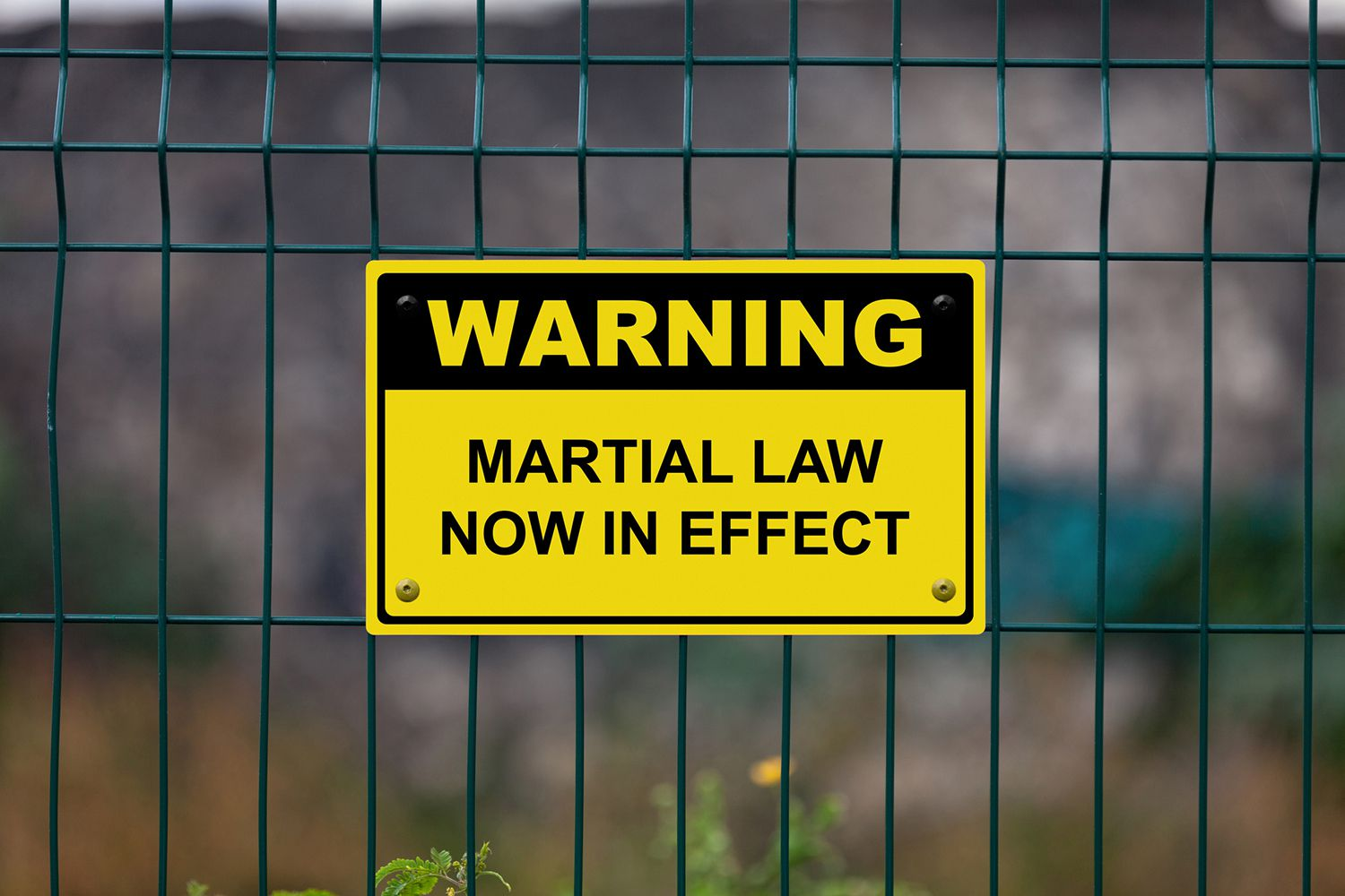 Martial Law Defintion