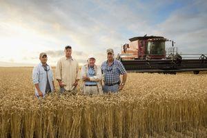 Three generations of farmers in wheat field