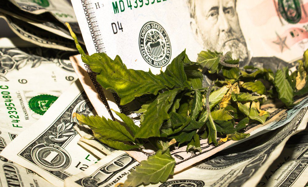 Top Marijuana Private Equity and Venture Capital Funds