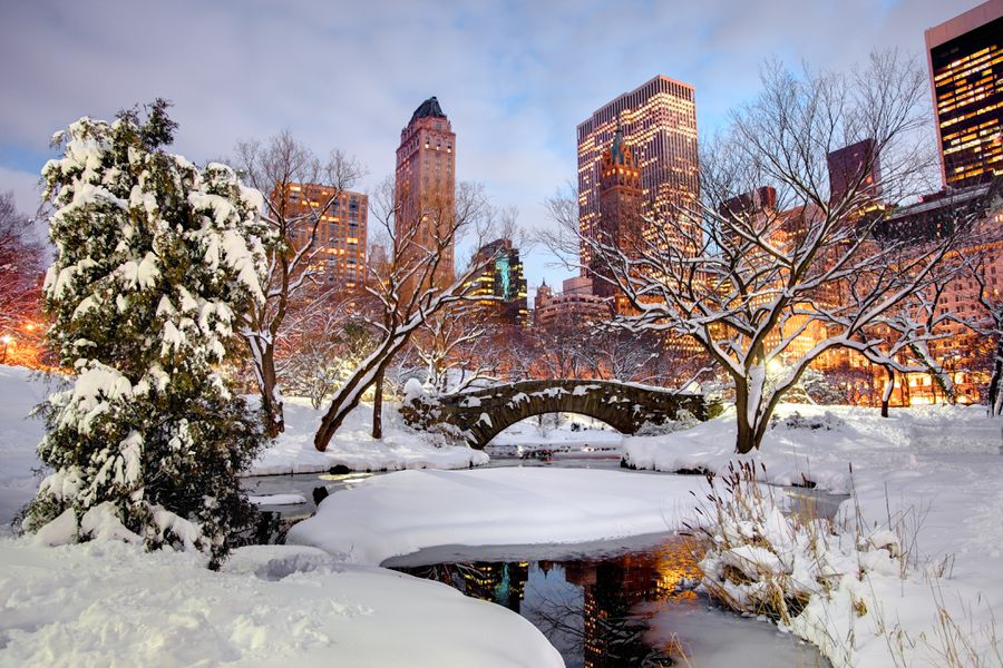 Winter in Central Park, New York City