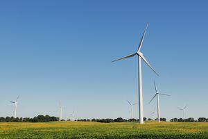Green Energy Indiana Wind Turbine Farm and Soybean Field