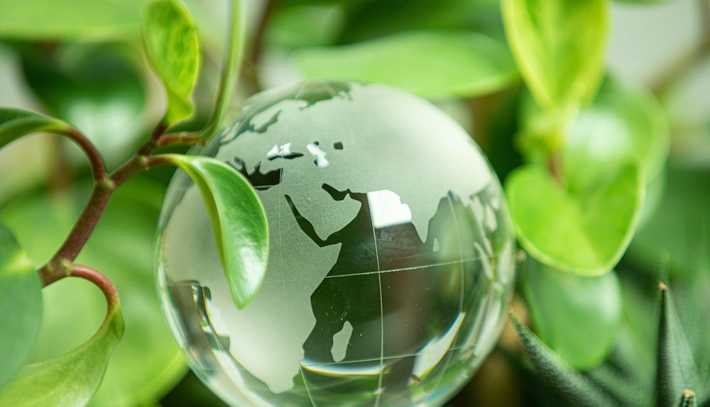 Image result for The State of Sustainable Investing in 2020