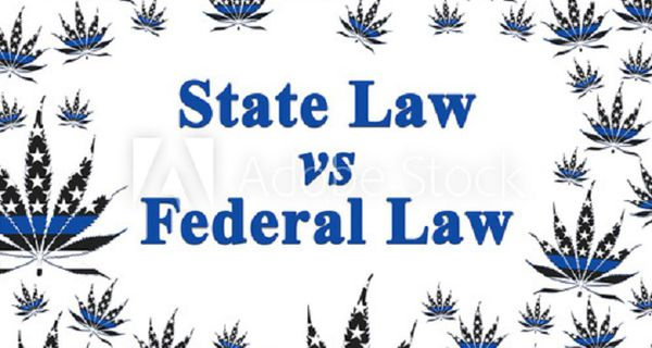 """""""State law vs. federal law"""" words with marijuana leaves"""