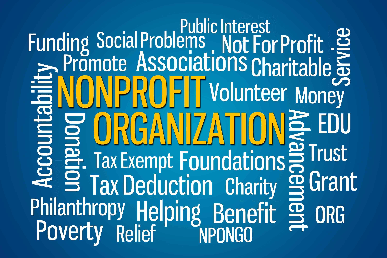Nonprofit Organization Npo