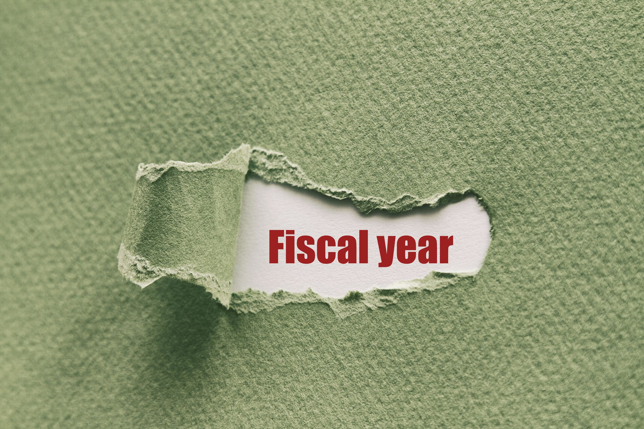 Fiscal Year Fy Definition