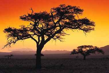 <b>Interested in Investing in Africa? Here's How</b>