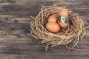 nest egg with money showing