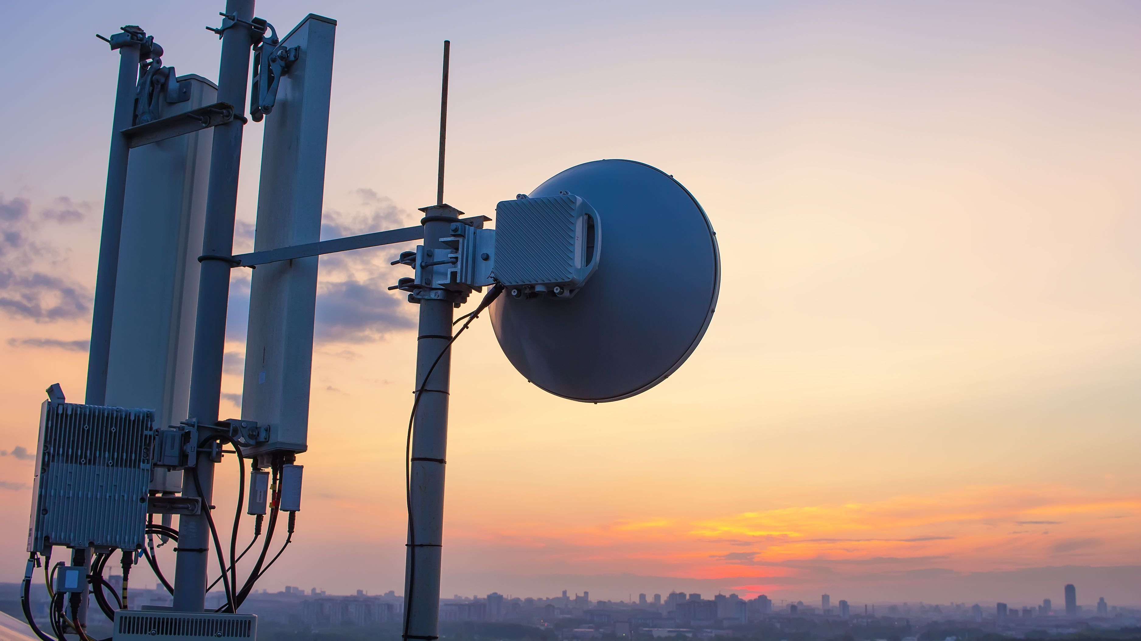 Government Regulated Impact on the Telecommunications Sector