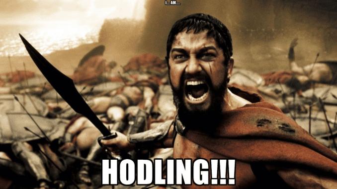 Should You HODL Bitcoin?