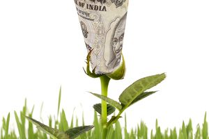 An Indian rupee sprouting like a flower