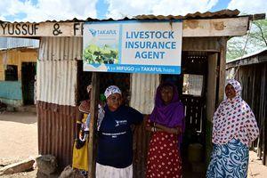 livestock insurance agent for Takaful Insurance