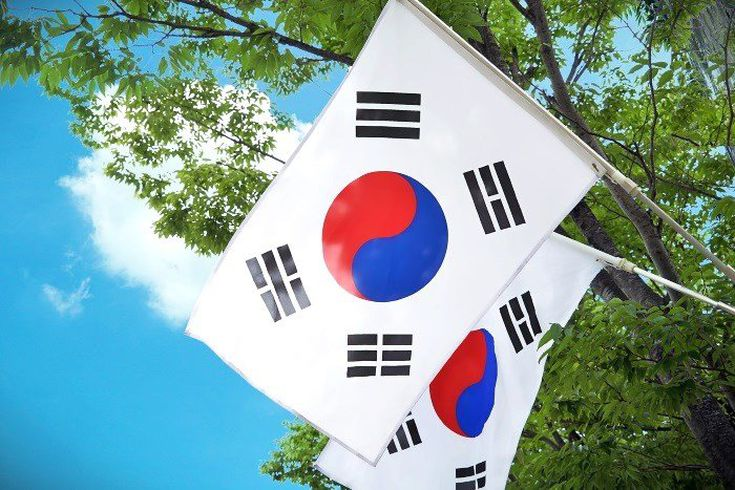 south korea to invest into cryptocurrency how to find best cryptocurrency to invest in