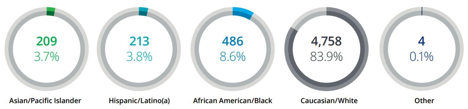 Fortune 500 Board Members by Race