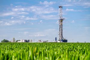 Oil rig on a corn field.
