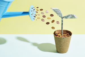 Pennies being poured on a plant formed from dollars