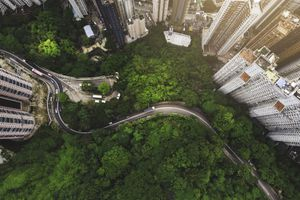 Aerial view of curve road in forest against buildings in Hong Kong