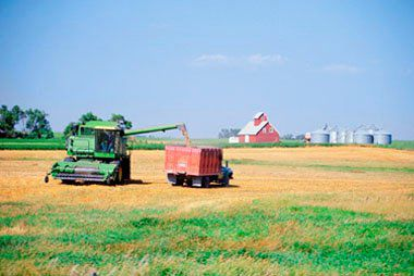 Top Agricultural Producing Countries