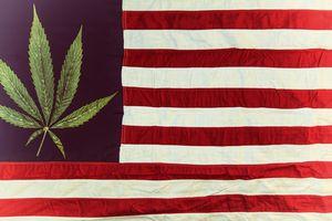 Shutterstock: Cannabis Flag
