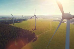 Windmills- wind farm
