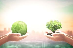 Two entrepreneur hands holding heart shape of big tree and earth globe of grass.
