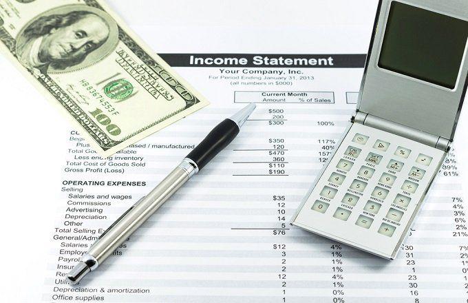 profit and loss statement p l