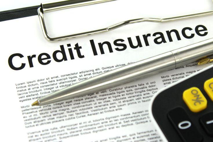 trade credit insurance advisor