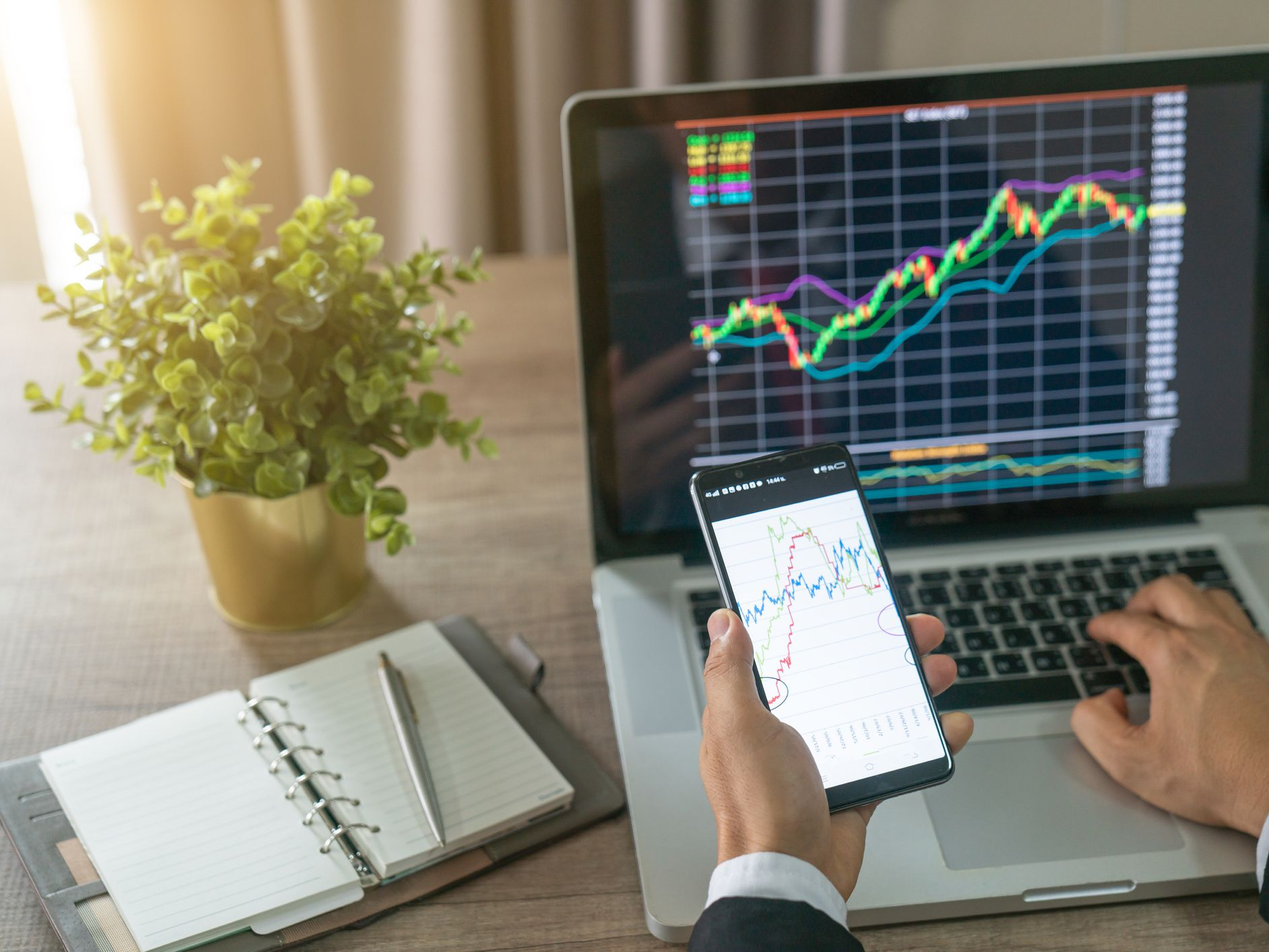 Stock Screener Definition