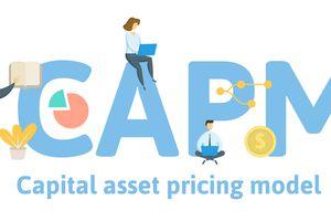 CAPM, Capital Asset Pricing Model.