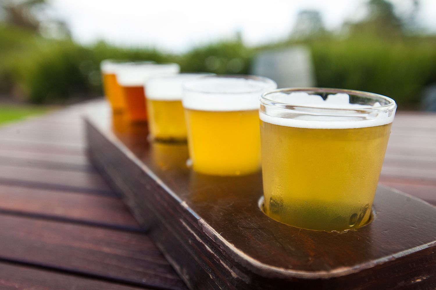 The Top 5 Beer Stocks of 2018