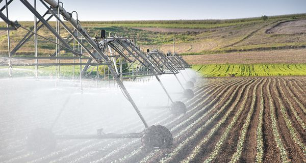 Image of agriculture