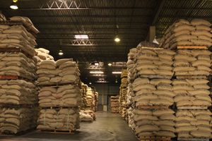 Interior of a warehouse filled with pallets holding sacks of coffee beans.